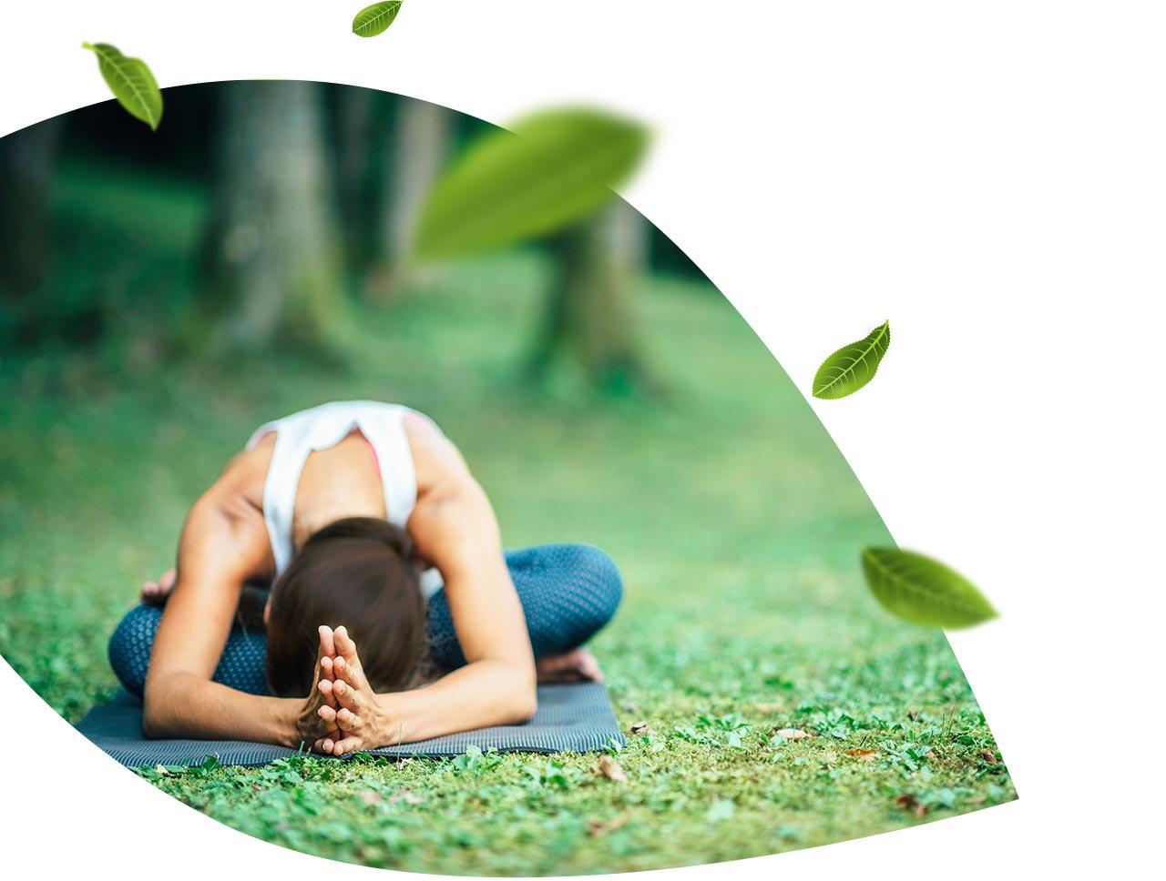L Herbier Du Midi Produits Naturels stage reconnexion à soi et à la nature - fluide yoga