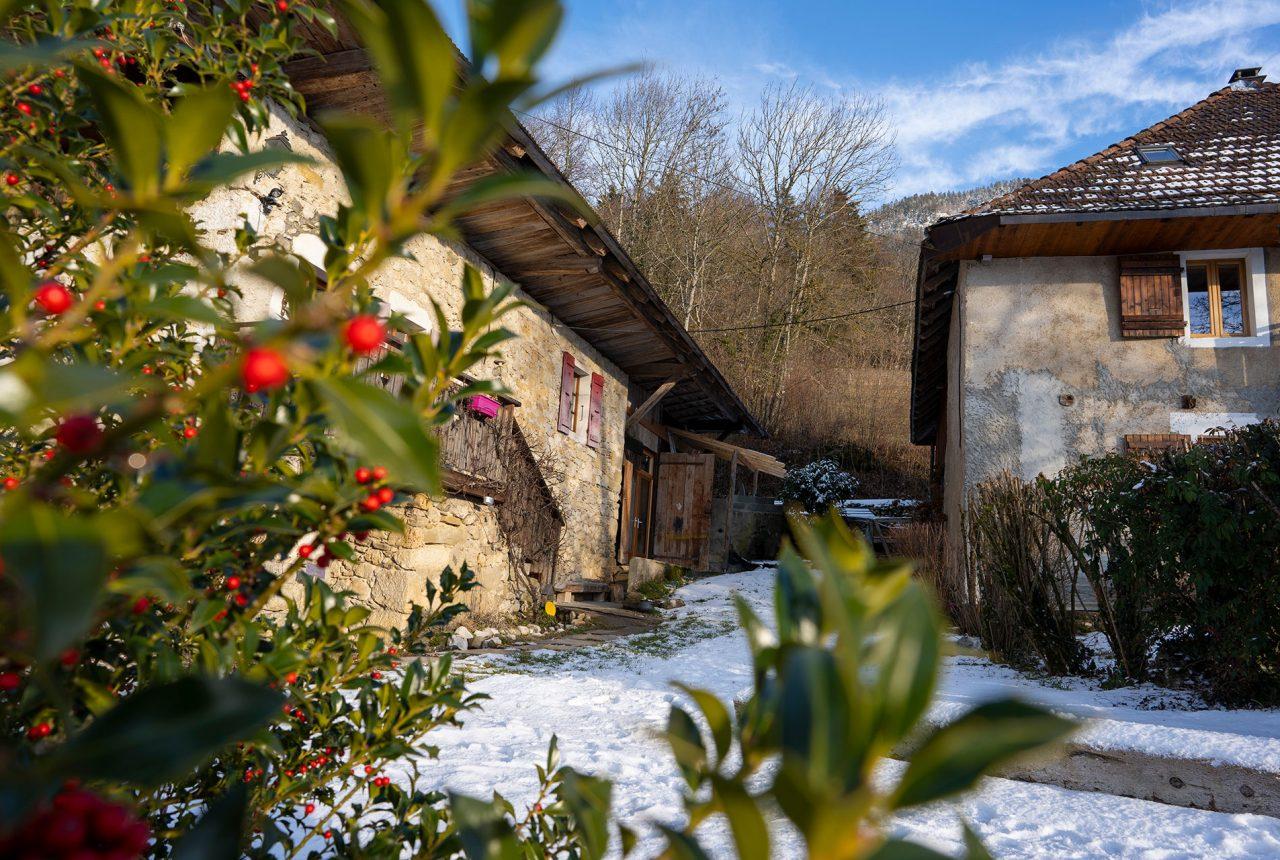 Ferme Zen en Bauges et gîte Lou Mansou - la frenière - la Motte en Bauges